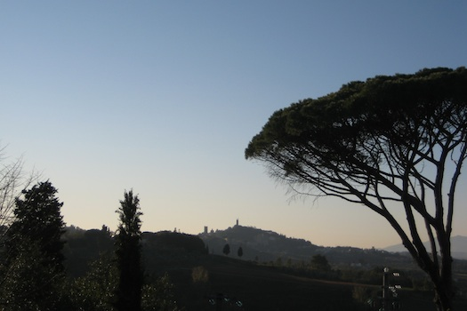 A Tuscan Vertical Image